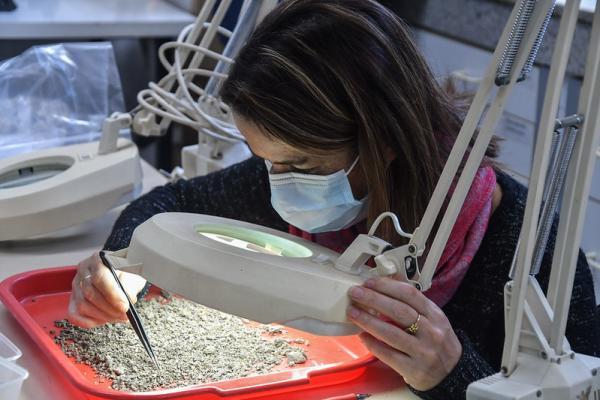 Referentes en la ciencia arqueológica